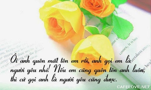 nhung-loi-to-tinh-hay-ngot-ngao-lang-man-va-de-thuong-nhat-don-tim-phai-dep-ban-nen-tham-khao-1