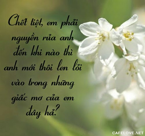 nhung-loi-to-tinh-hay-ngot-ngao-lang-man-va-de-thuong-nhat-don-tim-phai-dep-ban-nen-tham-khao-7