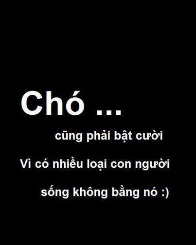 nhung-stt-bat-hu-cuc-hay-hay-ve-tinh-yeu-cuoc-25