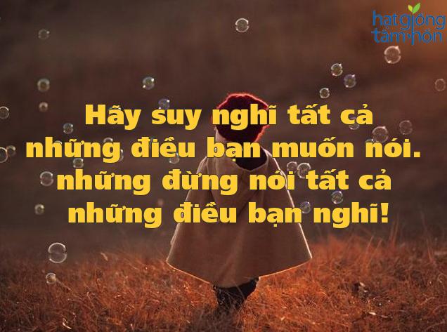 nhung-stt-hay-va-doc-ve-danh-ngon-cuoc-song-di-vao-long-nguoi-ban-khong-nen-bo-qua-13