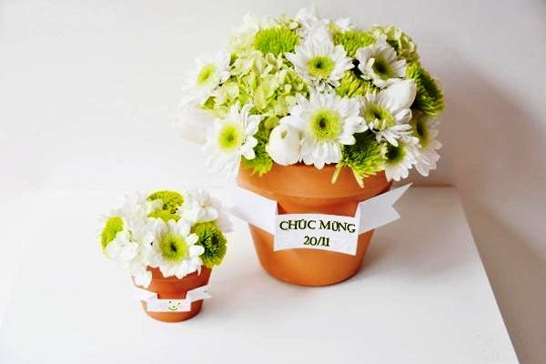 Hoa đẹp tặng ngày 20/11 dành cho thầy cô giáo đầy ý nghĩa - 1