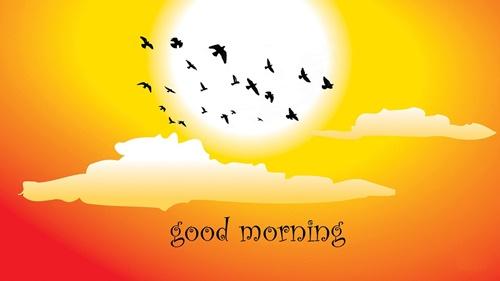 Những lời chúc buổi sáng hay ý nghĩa bằng hình ảnh đẹp đáng để đăng lên tường 12