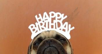 Những câu chúc sinh nhật hài hước và bá đạo nhất cười đau bụng -3